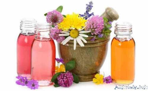 лекарственные препараты из подмора пчел: обзор и приготовление