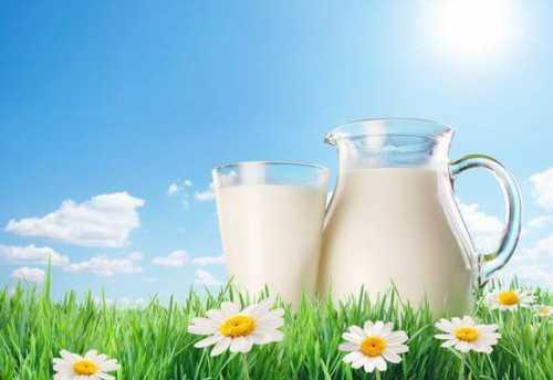 как из молока сделать кефир: быстро, полезно, натурально