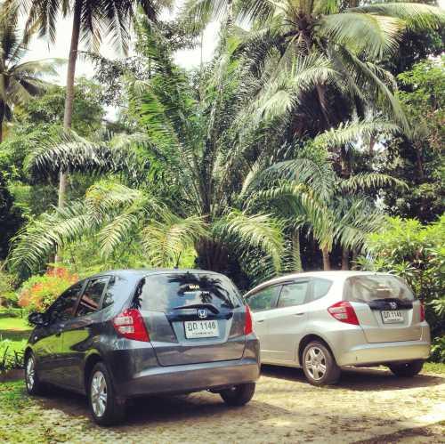 аренда автомобиля закинф: на чем и как удобнее ездить по острову